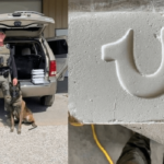 Deputy and K9 find 15 pounds of Fentanyl worth $100 million